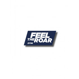 "DTM Pin ""FEEL THE ROAR"""